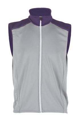 Show details for Galvin Green Denver Bodywarmer - Steel/Plum/White