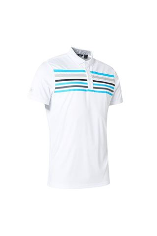 Picture of Abacus Men's Louth Polo Shirt - White / Grey